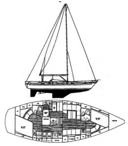 Alternate Hylas 44 Layout (note offset berth aft)