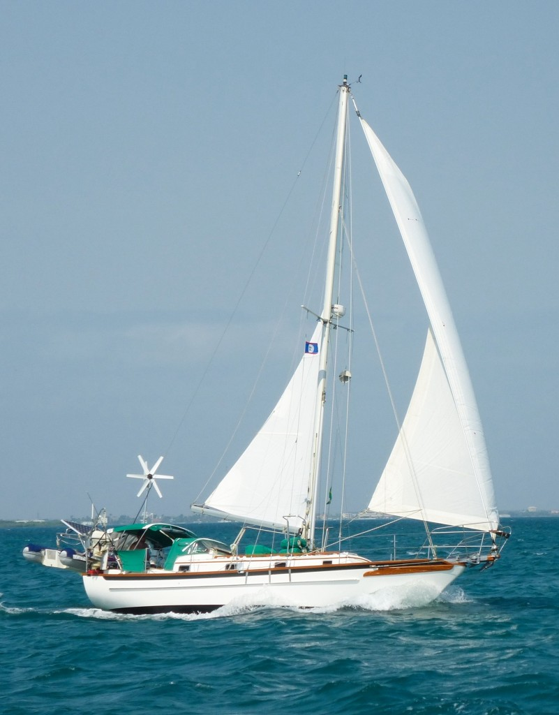 new sailing photo